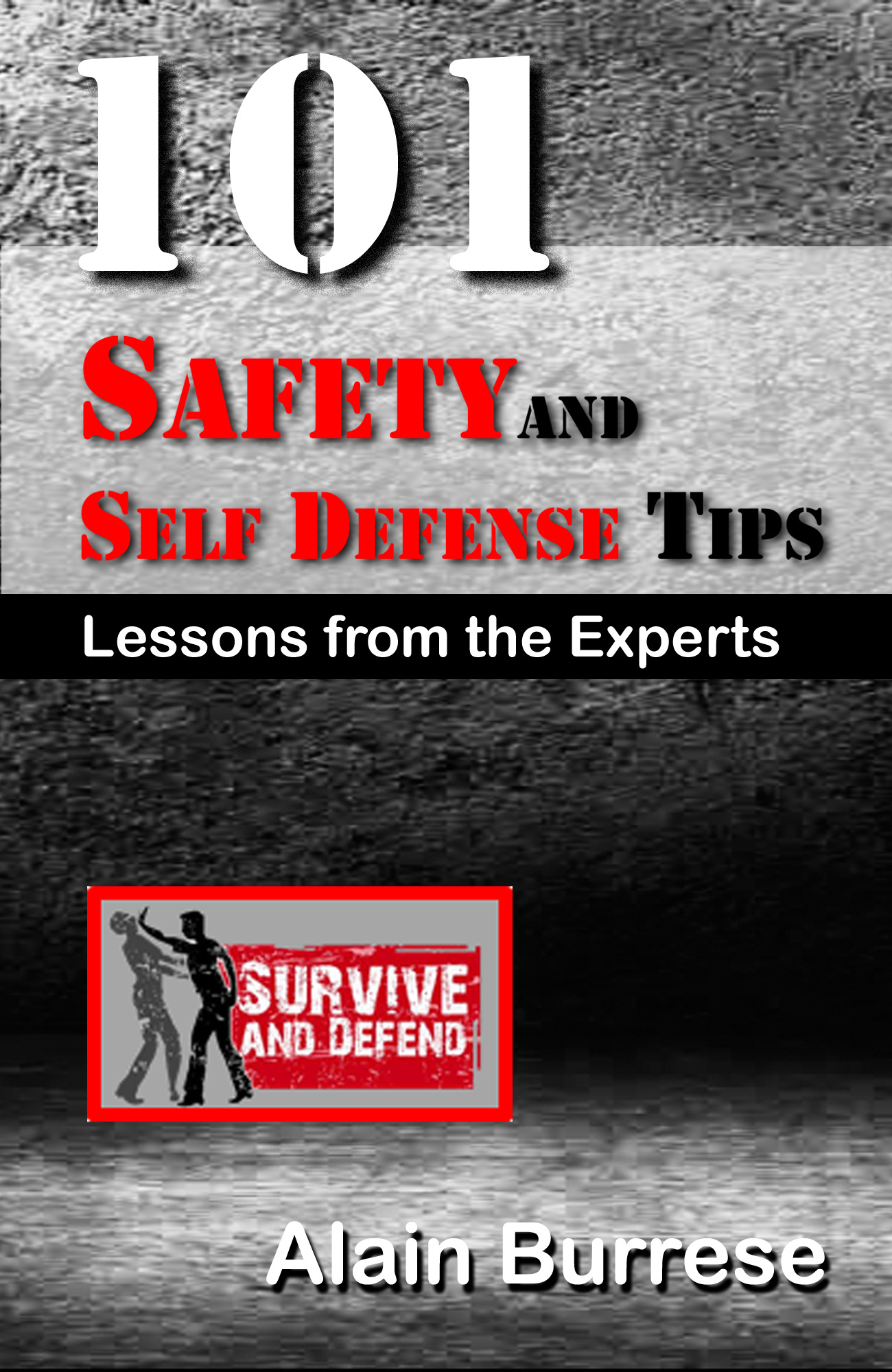 101-SafetySecurityTipsCover-ver-1 101 Safety and Self-Defense Tips: Lessons  From The Experts ...